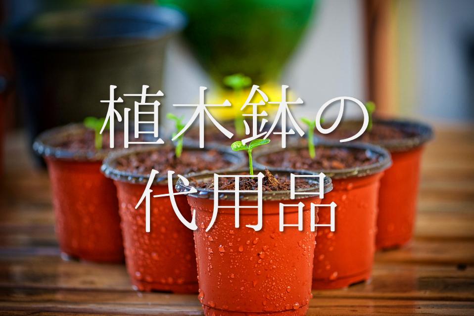 【植木鉢の代用品 8選】袋やペットボトル・牛乳パックなど!作り方を動画付きで紹介