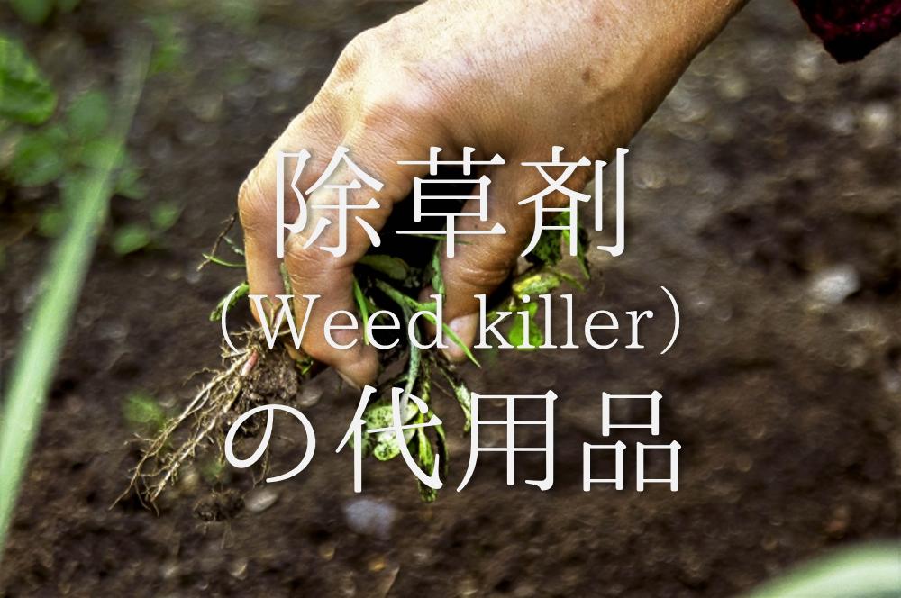 【除草剤の代用品 8選】身近なもので簡単に除草!塩水・熱湯などおすすめ除草方法を紹介