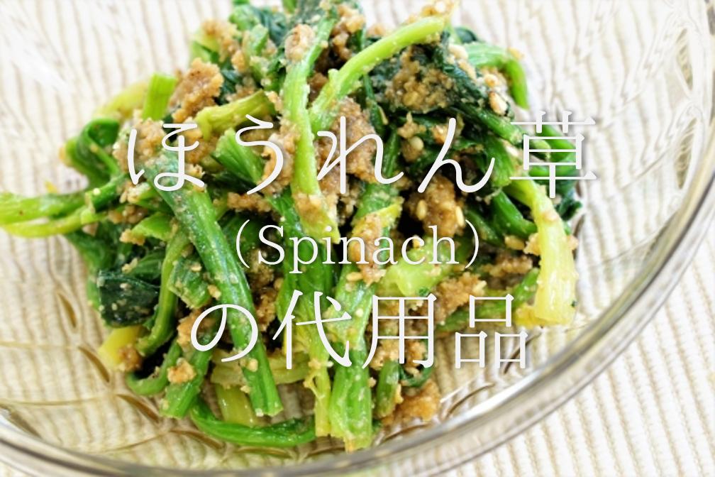 【ほうれん草の代用品 6選】似た野菜は何がある?小松菜・空心菜・チンゲン菜など代替品を紹介!