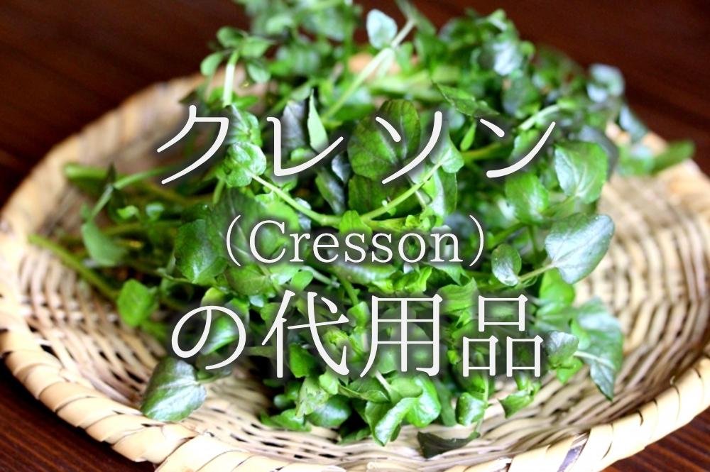 【クレソンの代用品 12選】代わりになる野菜はコレ!おすすめ代替品を徹底的に紹介