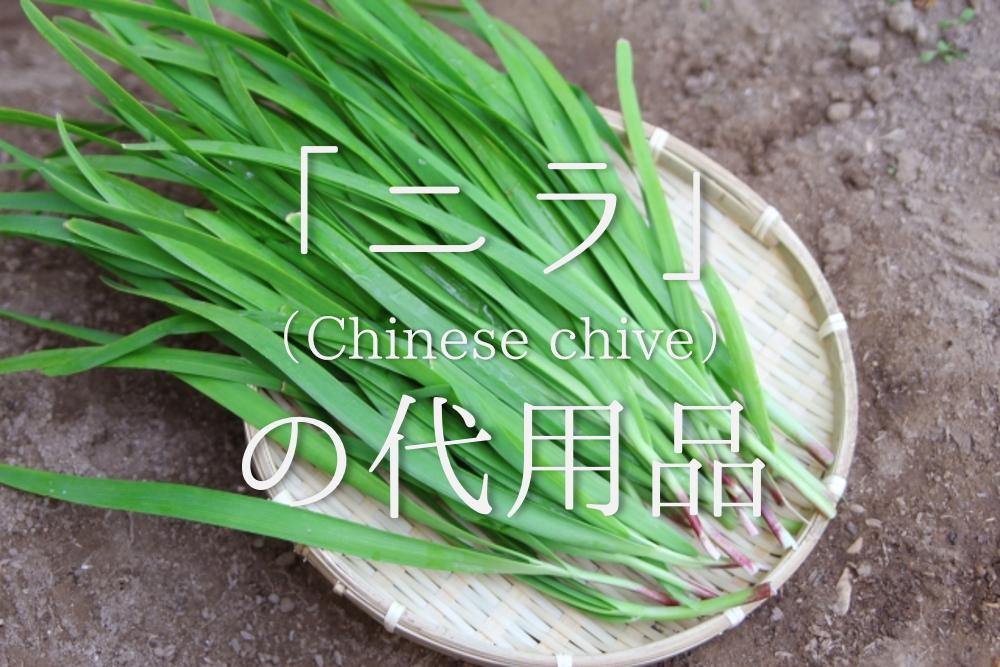 【ニラの代用 16選】チヂミや餃子などに最適!!ネギなどオススメ代替品を紹介