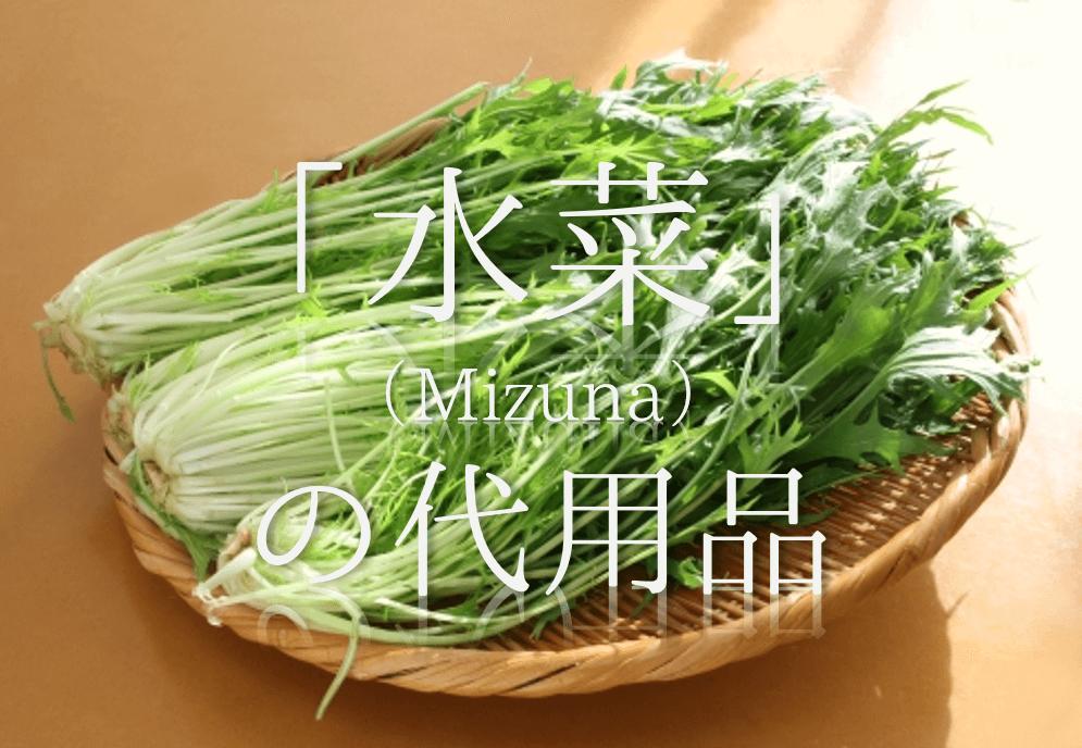 【水菜の代用 10選】代わりになるのはコレ!!水菜に似たオススメ野菜を紹介