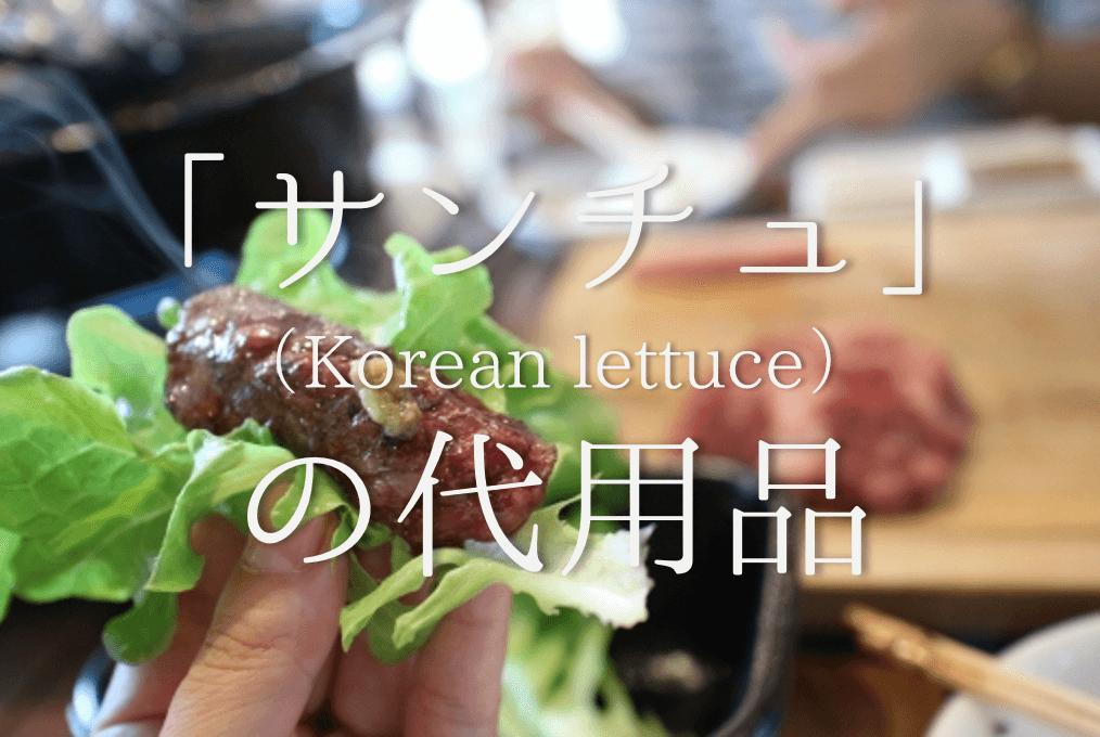 【サンチュの代用 7選】焼き肉にはレタスが最適!?オススメ代替品を徹底的に紹介!